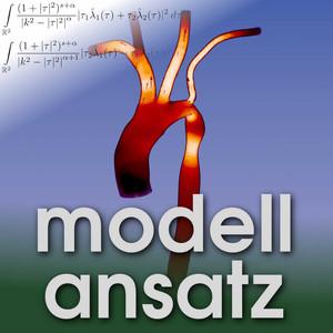 Der Modellansatz: Aorta-Challenge. Simulation: Thomas Henn und Mathias Krause. Visualisierung: Sebastian Ritterbusch.