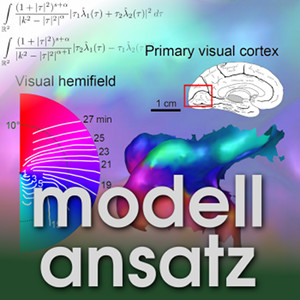Der Modellansatz: Migräne. Visualisierung: Markus A Dahlem. Komposition: Sebastian Ritterbusch