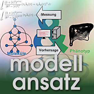 Der Modellansatz: Systembiologie, Visualisierung: Lorenz Adlung, Komposition: Sebastian Ritterbusch