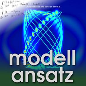 Modellansatz: Waves. Visualisierung: Enrique Zuazua, Komposition: Sebastian Ritterbusch