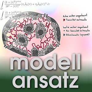 Der Modellansatz: Zellkerne, Bild: L. Hilbert, Komposition: S. Ritterbusch